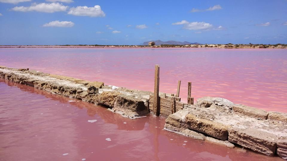 Saline rosa dello Stagnone Di Marsala