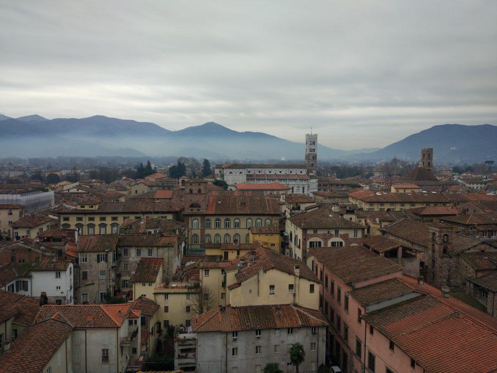Vista dalla Torre Guinigi