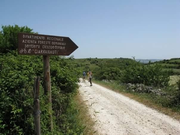 sentiero biciclette bosco giarranauti pantalica