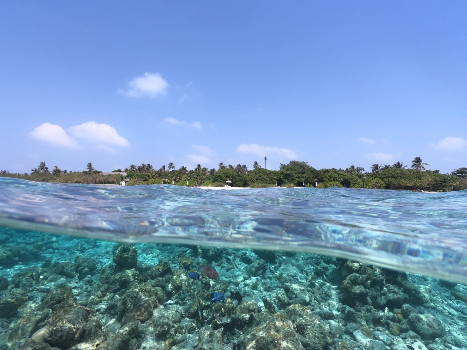 Kudafushi_dome_port