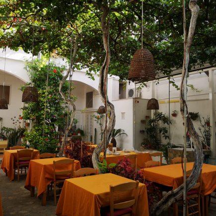Cortile interno con giardino e viti centenarie dell hotel Feola a Ponza