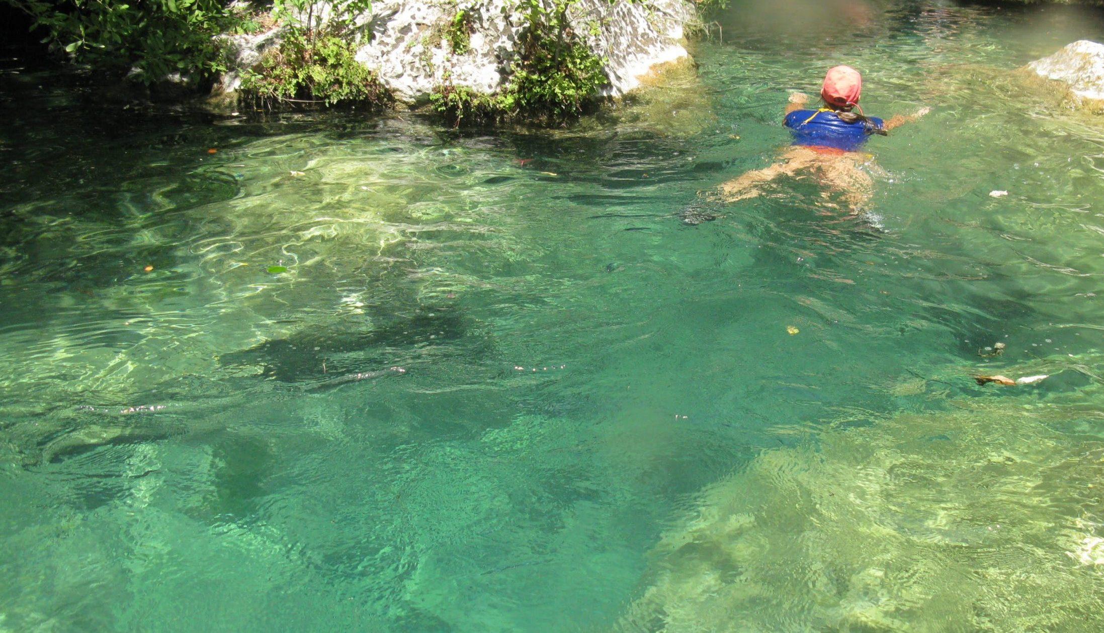nuotando nelle acque limpide del torrente calcinara