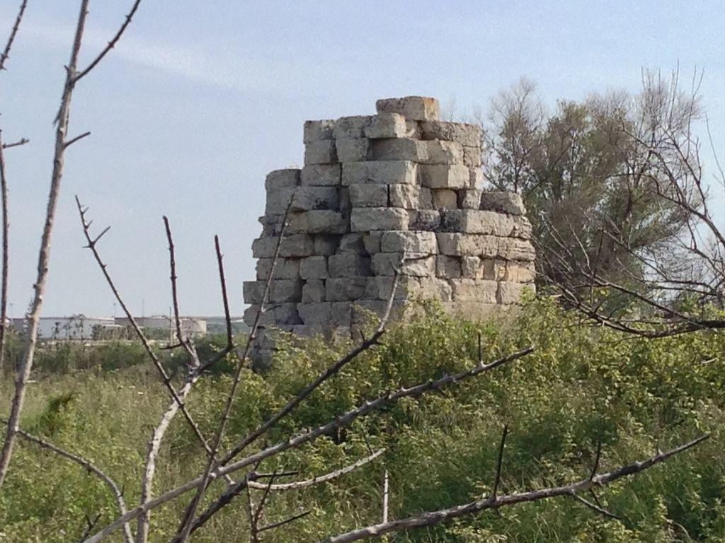 guglia di marcello, monumento su basamento lapideo in mezzo ai rovi